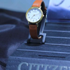 Citizen's Watch